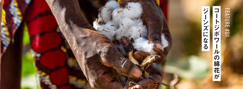 コートジボワールの綿花がジーンズになる